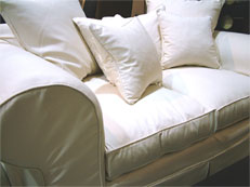 Professional Leather and Upholstery Cleaning